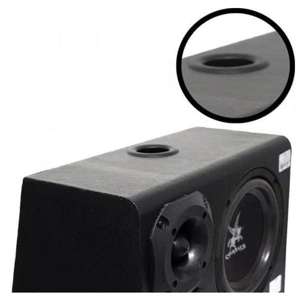 caixa amplificada 300 watts 8 polegadas2
